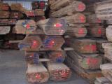 Dulapi Netiviti Germania - Vand Dulapi-cherestea Netivita Stejar 26 mm