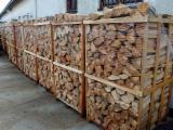 Servië  - Fordaq Online market - Amerikaans Beuken, Rode Eik Brandhout/Houtblokken Gekloofd 25;  33;  50 cm