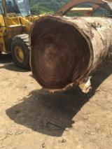 Services And Jobs - Monkey Pods / Saman Saw Logs