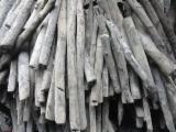 Brandhout - Resthout Houtskool - Eucalyptus Houtskool