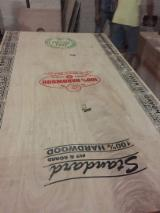 Sperrholz Zu Verkaufen Indien - Rohsperrholz - Industriesperrholz