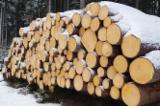 Nadelrundholz Zu Verkaufen Russland - Schnittholzstämme, Sibirische Lärche, Zirbe, Arve