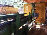 Woodworking Machinery - Used PEZZOLATO TWIN D80 2006 Sawmill For Sale Italy