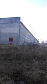 Sfogliati Derullati Betulla - Vendo Sfogliati derullati Faggio, Betulla Sfogliato İvano Frankivsk