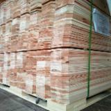 Gartenprodukte - Chinesische Tränenzypresse , Zäune - Wände