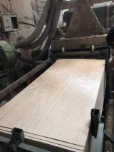 Fordaq木材市场 - 天然胶合板, Andiroba