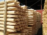 Softwood  Logs - Pine Stakes, diameter 5-16 cm