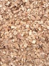 Energie- Und Feuerholz Waldhackschnitzel - Eukalyptus Waldhackschnitzel