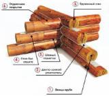 null - Siberian Larch / Pine / Spruce Cylinder Log Wall Prefab House