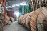 Pallets, Packaging And Packaging Timber Asia - New Poplar / Eucalyptus Cable Drum