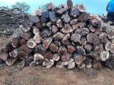 Firewood, Pellets And Residues - Camelthorn Firewood 4-12 cm