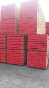 经加压处理的木材及建筑材  - 联络制造商 - 木板, 放射松