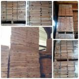 Hardwood  Sawn Timber - Lumber - Planed Timber For Sale - Beech Elements 25 mm