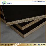 18 mm Poplar Film Faced Marine Plywood For Formwork