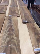 Wholesale Wood Veneer Sheets - Dibetou  Crotch (fork) Natural Veneer Spain