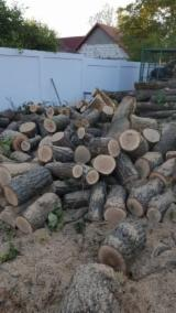 Firewood, Pellets And Residues - Acacia, Oak Firewood/Woodlogs Cleaved -- mm