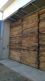 Hardwood  Sawn Timber - Lumber - Planed Timber For Sale - Oak Planks (boards) Romania Cluj