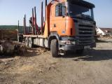Camion Transport Busteni - Camion Scania +remorca forestiera cu macara