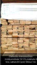 Find best timber supplies on Fordaq - -- mm Kiln Dry (KD) Fir , Spruce  Romania