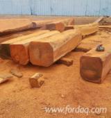 Bossen En Stammen - Square Logs, Tali
