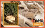 Brandhout - Resthout Gebruikt Hout - Spar , Den  - Grenenhout, Gewone Spar  - Vurenhout Gebruikt Hout