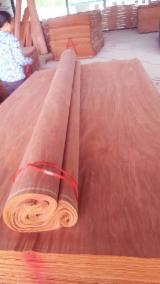 Buy Or Sell  Commercial Plywood - Keruing Commercial Plywood