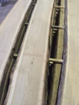 Hardwood  Unedged Timber - Flitches - Boules - Oak board unedged fresh elites