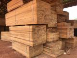 null - Iroko sawn timber, KD