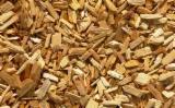 薪炭材-木材剩余物 木片(源自锯木厂) - 木片-树皮-下脚料-锯屑-削片 木片(源自锯木厂) 火炬松