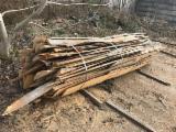 Ogrevno Drvo - Drvni Ostatci Okrajci Završeci - Bukva Okrajci/Završeci Rumunija