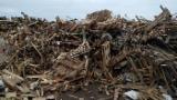 Ogrevno Drvo - Drvni Ostatci Korišćeno Drvo - Korišćeno Drvo Rumunija