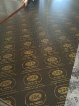 En iyi Ahşap Tedariğini Fordaq ile yakalayın - Linyi Huabao Import and Export Co.,Ltd - Plywood – Siyah Film Kaplı, Huş Ağacı