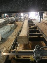 Nadelholz  Blockware, Unbesäumtes Holz Zu Verkaufen - Blockware, Kiefer  - Föhre, Fichte  , FSC