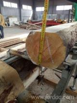 Softwood  Logs For Sale - Spruce Logs 14-30 cm