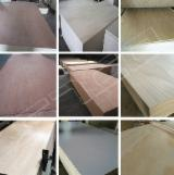 4.5 mm Pencil Cedar Triply Plywood for Decoration