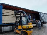 Paulownia Hardwood Logs - Paulownia Peeling Logs, diameter 30-40 cm