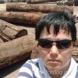 Zingana Hardwood Logs - Zingana Logs 40 cm