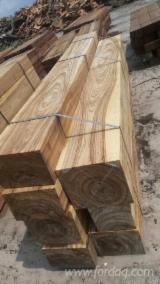 Sapelli Hardwood Logs - Doussie / Sapelli Logs 70+ cm