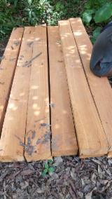 喀麦隆 - Fordaq 在线 市場 - 木骨架,桁架梁,边框, 翼形红铁木, 加蓬圆(盘)豆木