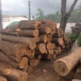 Ipe Hardwood Logs - Ipe Industrial Logs 20 cm