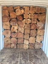 Ghana - Fordaq Online Markt - Stämme Für Die Industrie, Faserholz, Kossoholz