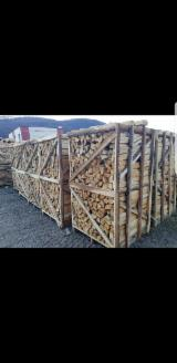 Firewood, Pellets And Residues - Beech Firewood/Woodlogs Cleaved, 6-14 cm