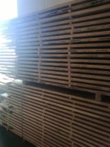 Croatia Supplies - Oak Edged Planks 26/32/38 mm