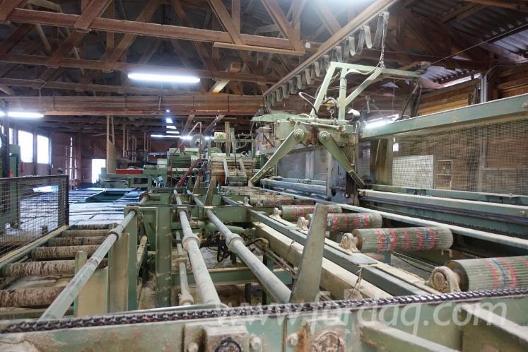 原木转换及锯切机器 - 其它 Stingl 二手 罗马尼亚