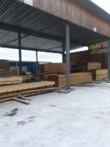 Russia Supplies - Spruce / Pine / Larch Logs 14+ cm