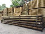 Drewno Iglaste  Kłody Na Sprzedaż - Słupy, Palisady, Pale, Sosna Zwyczajna  - Redwood