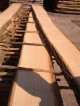 Unedged Hardwood Timber - White Ash Loose Italy