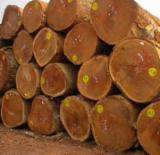 Hardwood  Sawn Timber - Lumber - Planed Timber For Sale - Gombe Planks 25-76 mm