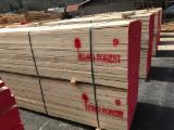 Offers Slovenia - Spruce Sawn Timber ANTI STAINED AD, 20+ mm thick