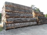 AD Oak Boules (QB2/QB1/QBA), 2.50-8 m